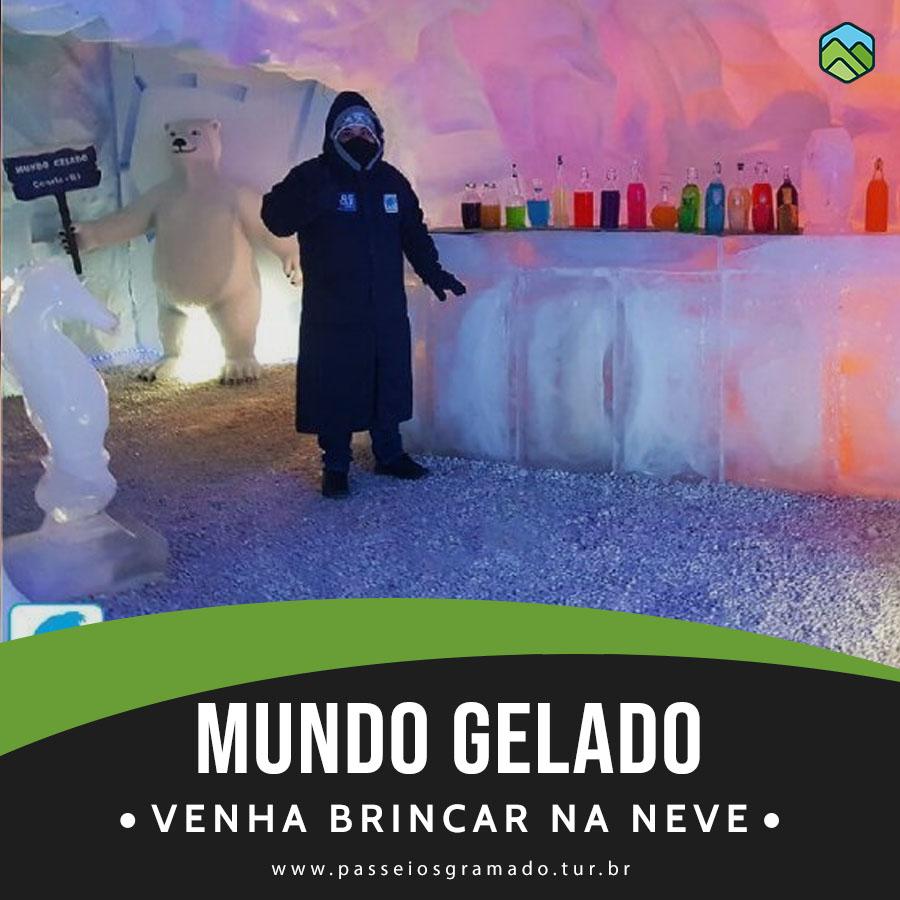 Read more about the article Ingresso Mundo Gelado do Capitão
