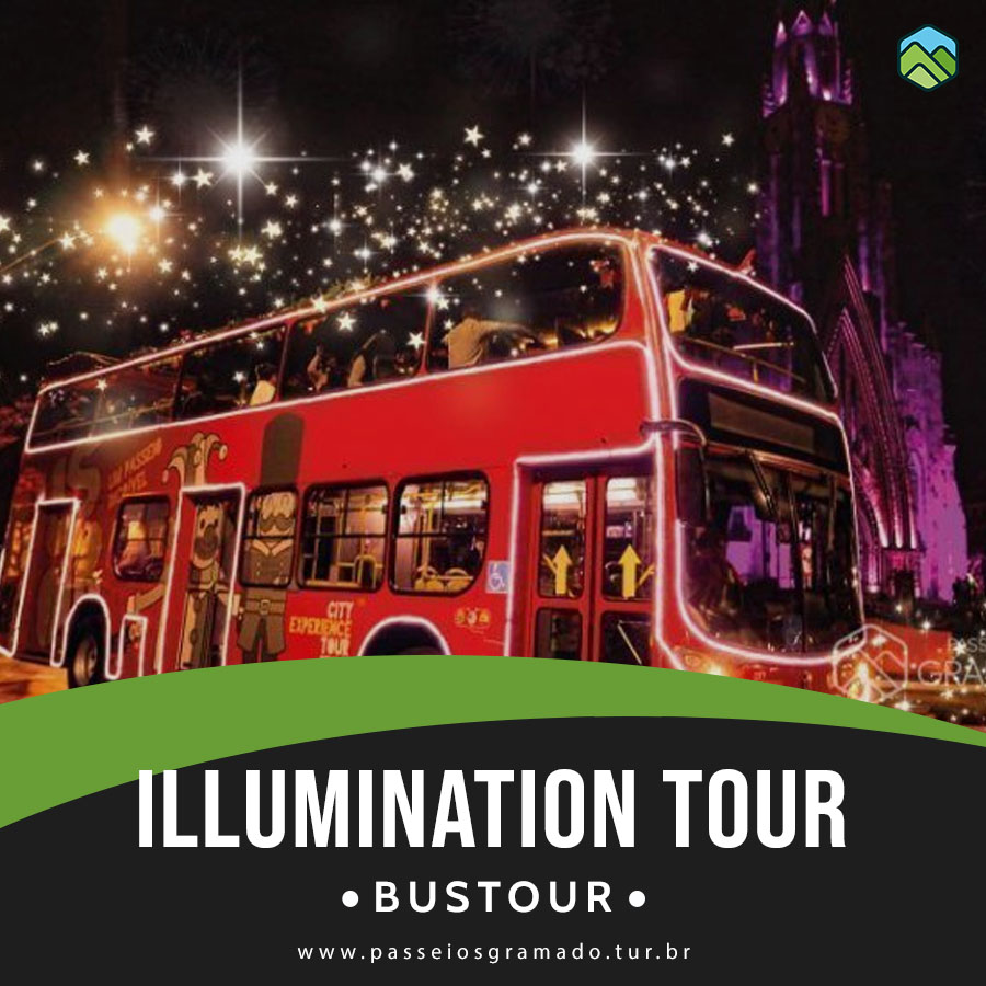 Read more about the article Bustour Illumination Show