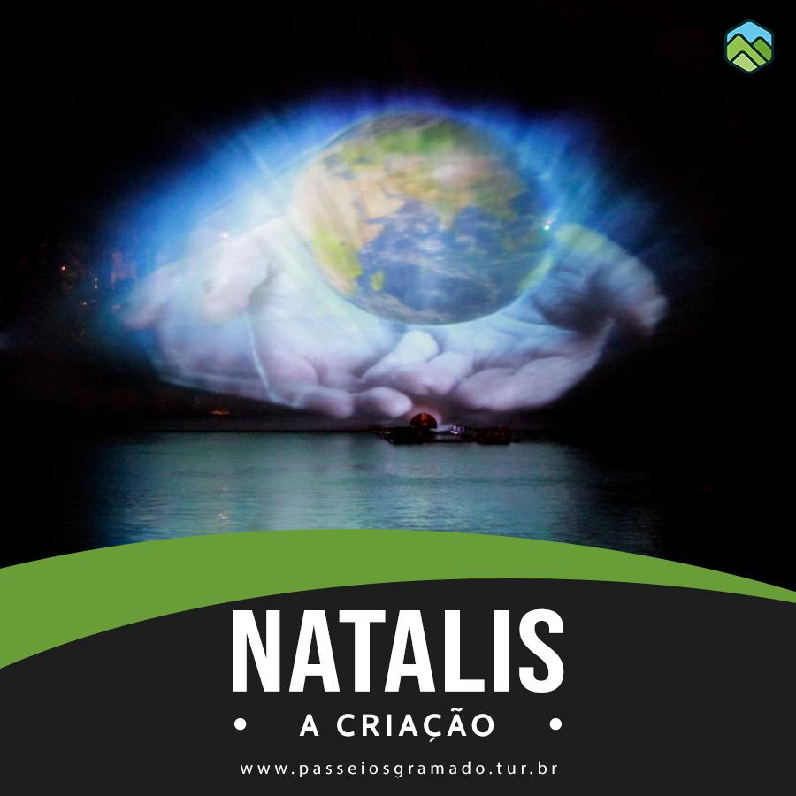 Read more about the article Natalis – A Criação